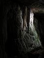 112 Cova de Sant Miquel del Fai, paret calcària.JPG