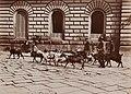 12. La Vita Nelle Strade in Napoli (5711497832).jpg