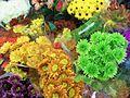 1461877 Floral-Bouquets-3 620.jpg
