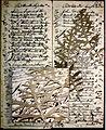 1860 Artemisia Doctor Losee Ledger.jpg