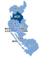 1994 Kaohsiung Mayoral Election.PNG