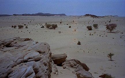 1997 278-13 Sahara