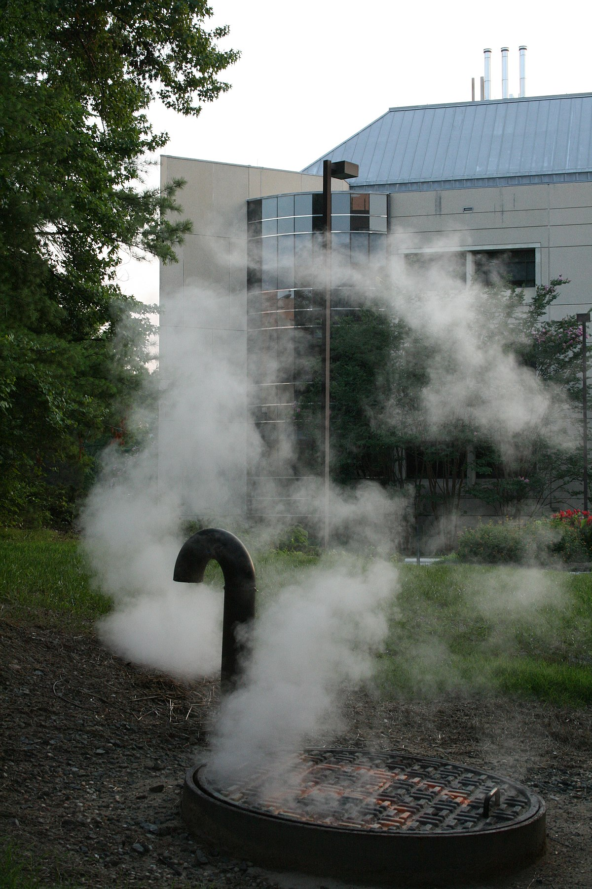 Dampf – Wikipedia