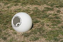 2010-02-14 Detached light dome on Duke lawn.jpg