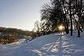 2012-12-31 Solomianka Landscape Park.jpg