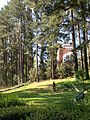 2012-366-107 Pre Timber (7089573469).jpg