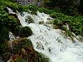 20130608 Plitvice Lakes National Park 139.jpg