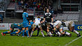 2014 Women's Six Nations Championship - France Italy (55).jpg