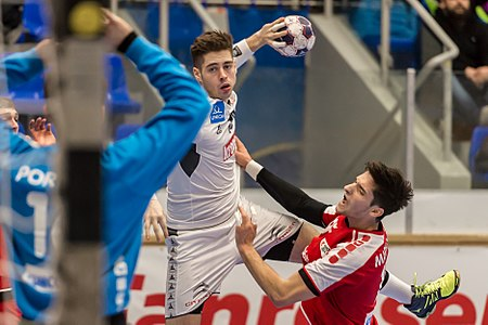 20170114 Handball AUT SUI DSC 9576.jpg