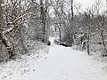 2018-03-21 11 48 01 View along a snow-covered walking path as it crosses a bridge in the Franklin Farm section of Oak Hill, Fairfax County, Virginia.jpg