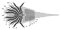 20201123 Dibasterium durgae ventral appendages..png