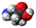 3-Aminoisobutyric-acid-3D-spacefill.png