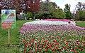 41700 Cheverny, France - panoramio (1).jpg