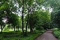 46-215-5003 Ходорівський парк.jpg
