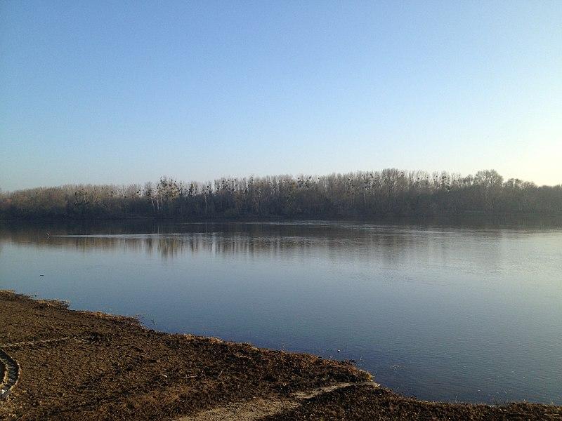 La Loire vue du Port à Soyer.