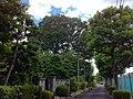 4 Chome-41 Jindaiji Minamimachi, Chōfu-shi, Tōkyō-to 182-0013, Japan - panoramio (2).jpg