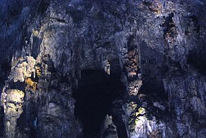 Grutas de Cacahuamilpa National Park - One of the examples of stalactite
