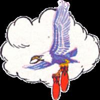 70th Bombardment Squadron