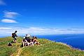 Açores 2010-07-19 (5051956292).jpg