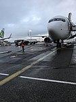 Aéroport de Lyon-Saint-Exupéry - terminal 1B - mars 2018 - avion Transavia.jpg