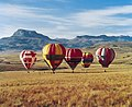 A Family of Hot Air Balloons - South Africa (2418533782).jpg