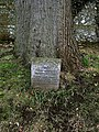 A headstone for a Marmoset - geograph.org.uk - 1720642.jpg