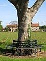 A seat on the green - geograph.org.uk - 1269054.jpg