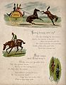 Above, a carriage horse baulks and kicks the horse behind; c Wellcome V0021952.jpg