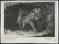Abraham Blooteling - Various Lions - 2005.266.4 - Cleveland Museum of Art.jpg
