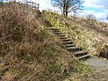 Access steps down to the Castle Eden Walkway - geograph.org.uk - 150764.jpg