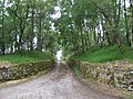 Access to Birkelunn - geograph.org.uk - 868695.jpg