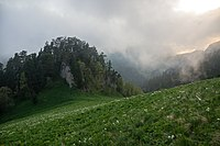 Acheshbok, Южные отроги горы Ачешбок, драматичные погодные условия раннего лета, Западный Кавказ.jpg