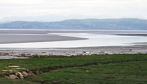 Morecambe Bay - Morecambe Bay at low tide from Hest Bank, looking towards Grange-over-Sands