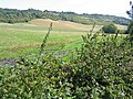 Across fields to the North Downs ridge - geograph.org.uk - 228136.jpg