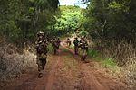 Advanced Infantry Course, Hawaii 2016 160920-M-QH615-126.jpg