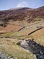 Afon Cwm Llan - geograph.org.uk - 150019.jpg