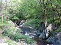 Afon Gain below Pont Gwynfynydd - geograph.org.uk - 496038.jpg
