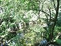 Afon Hwch near its outfall into Llyn Padarn - geograph.org.uk - 254288.jpg