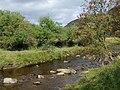 Afon Tywi below Nantyhwrch, Powys - geograph.org.uk - 1500718.jpg