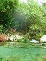 Akchour river - National park of Talassemtane.jpg