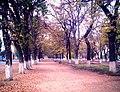 Alameda Parral.jpg