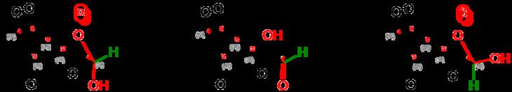 Alpha + beta D-Gulose (PYRANOSE) V.3.png
