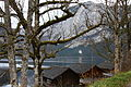 Altausseer See ost 79035 2014-11-15.JPG