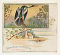 American Snake Bird, from the Game Birds series (N40) for Allen & Ginter Cigarettes MET DP839135.jpg