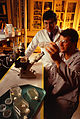 An Entomologist and a Technician examine Insect Cell cultures that will be used for Metabolic studies - USDA-ARS.jpg