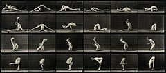 An acrobat in various contortions. Photogravure after Eadwea Wellcome V0048738.jpg