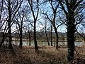 An der Limmat bei Oetwil an der Limmat - panoramio.jpg