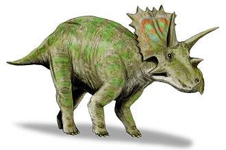1914 in paleontology - Anchiceratops