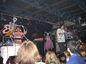 Animal Collective - Performing in 2007