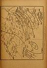 Annales de la Société royale zoologique et malacologique de Belgique (1910) (18198228632).jpg